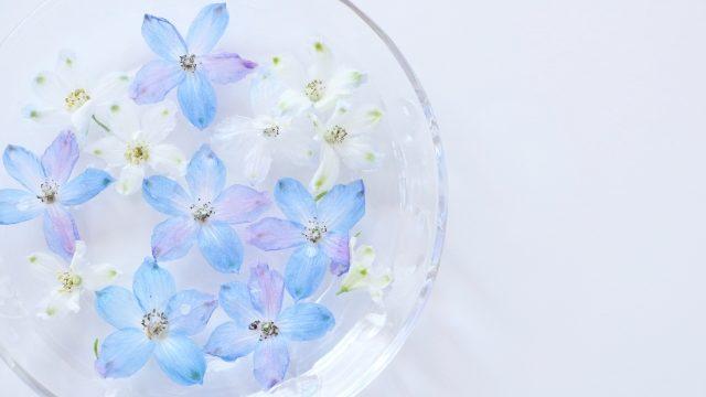 水に浮かべた青い花